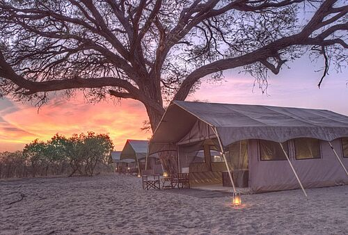 Zelt des Savute Under Canvas Camps in Savuti in der Abendstimmung Botswanas
