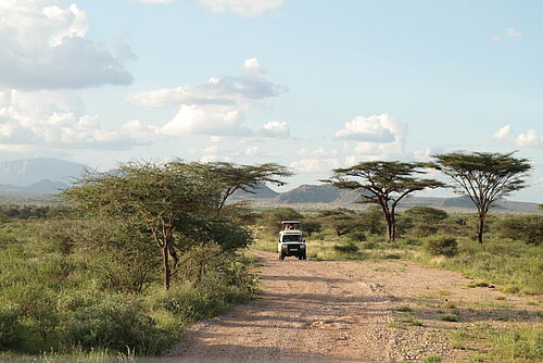 Luxus, Flugsafari, Safari, Kenia, Meru, Meru Nationalpark, Jeep