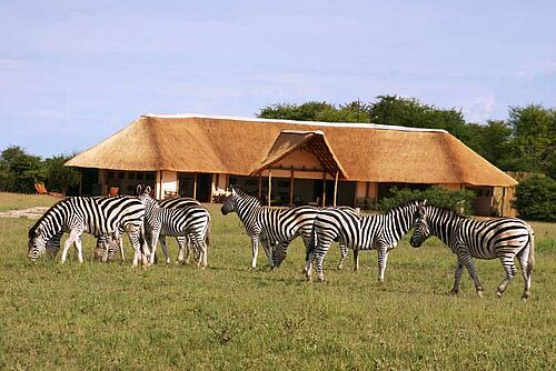 Botswana, Best Value, Safari, Nxai Pan, Salzpfannen, Unterkunft, Nxai Pan Camp