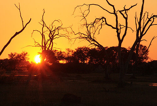 Botswana, Best Value, Safari, Sonnenuntergang